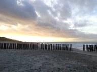 beach-239340__180
