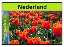 Nederland tulpen2