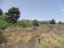 enta-vulkaan-lavastromen