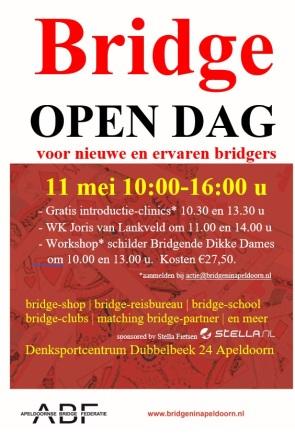 bridgeninapeldoorn3