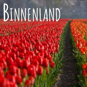 nederland1-1
